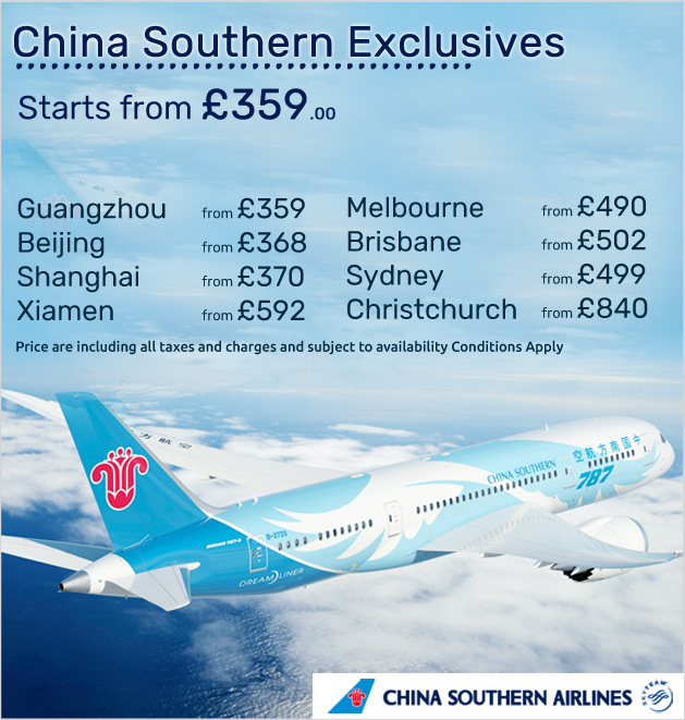 china southern_inner small